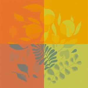 Orange Festival Citrus Jacquard Napkin, 100% Cotton Image