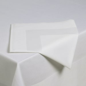 "Satin Band Cottonrich 22""x22"" Napkin"