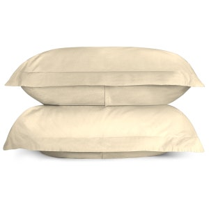 Sunset Ivory Set of 2 Standard/Queen Brushed Percale Pillow Shams