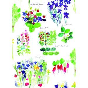 """Mille Fraisiers Printemps Kitchen Towel 20""""x28"""", 100% Cotton"""
