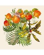Vintage Garden Natural Napkin, 100% Linen Image
